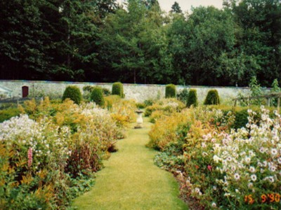 Picture of balance in herbaceous planting